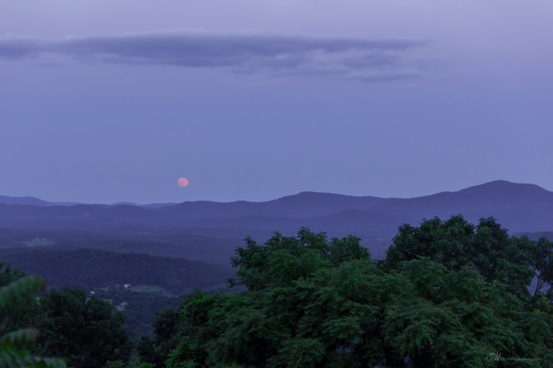 afton Moon wm