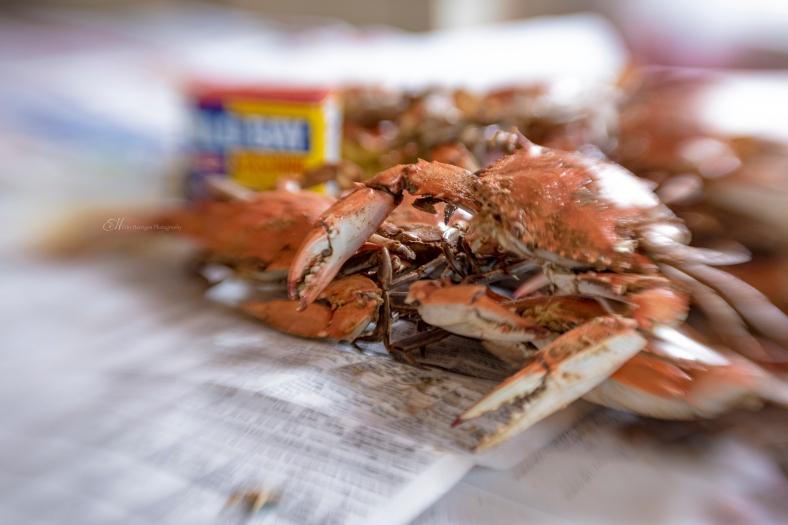 crabs wm