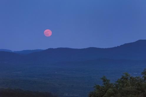 mountain moon adobe color wm