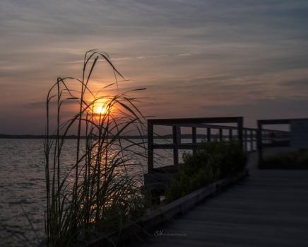 sunset bayside wm