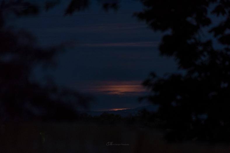 moonrises 2