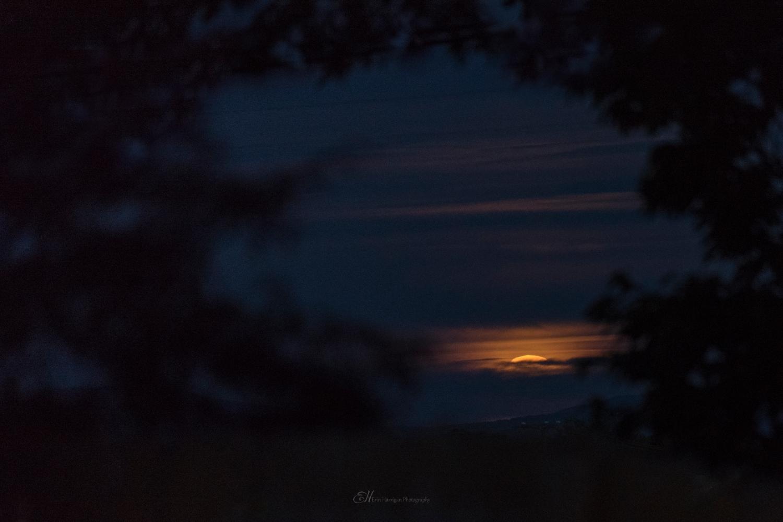 moonrises 3