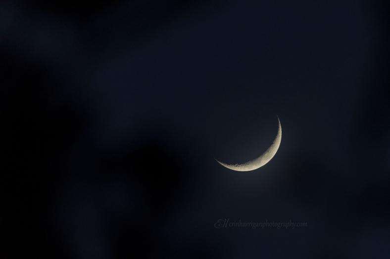 moon 5 edit wm