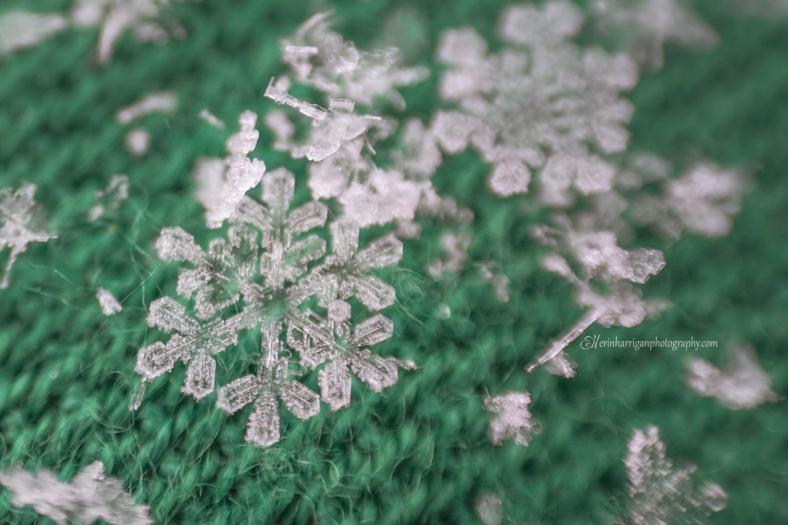 emarald snowflake wm