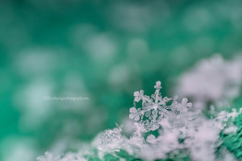snowflake 2 edit wm